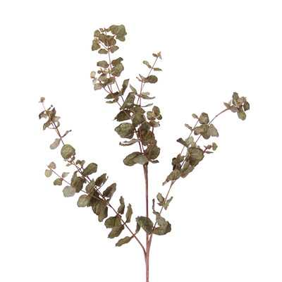 DIY Foliage Artificial Everlasting Eucalyptus (Set of 12) - Wayfair