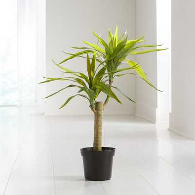 Potted Artificial Yucca - Crate and Barrel