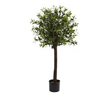 Faux Olive Topiary Tree, 4' - Pottery Barn