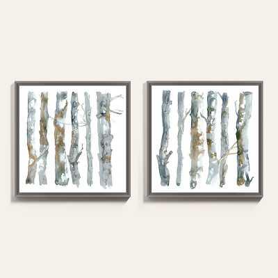 "Ballard Designs Birch Study Art  25"" x 25"" - Ballard Designs"