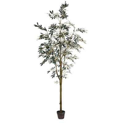 Artificial Potted Olive Floor Foliage Tree in Pot - Wayfair
