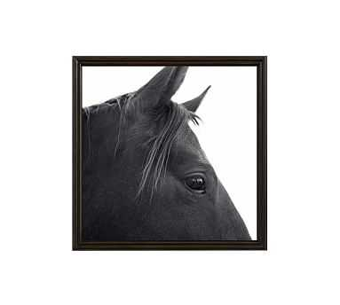 "Dark Horse in Profile Framed Print by Jennifer Meyers, 25 x 25"", Ridged Distressed Frame, Black, No Mat - Pottery Barn"