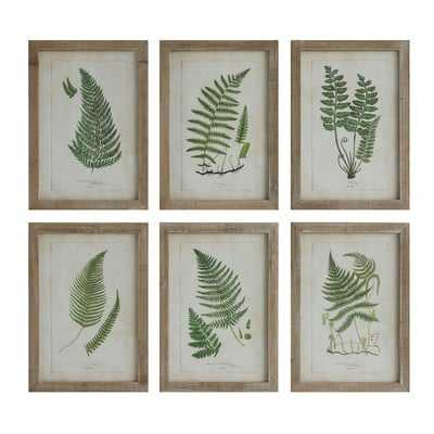 Fern Fronds - 6 Piece Picture Frame Print Set on Wood - Birch Lane