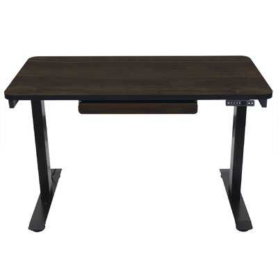 Electric Adjustable Standing Desk - Wayfair