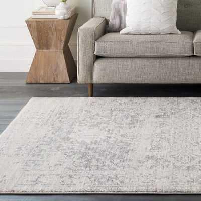 Hillsby Gray/Beige Area Rug - Wayfair