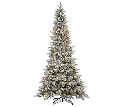 Lightly Flocked Canyon Fir Faux Tree, Clear Lights, 7.5' - Pottery Barn