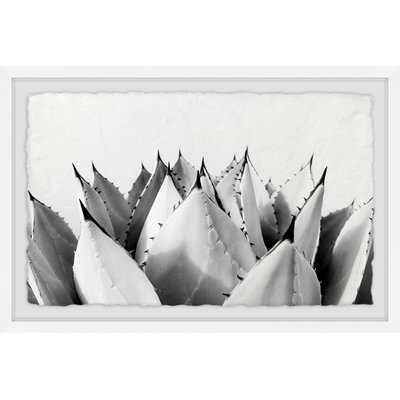 'Sweet Succulents II' Framed Print - Wayfair