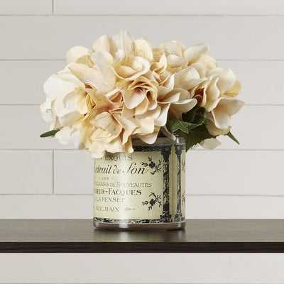 Adelaide Hydrangea Floral Arrangement in French Labeled Pot - Birch Lane