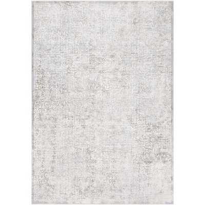 Burdine Distressed Abstract Light Gray Area Rug - Wayfair