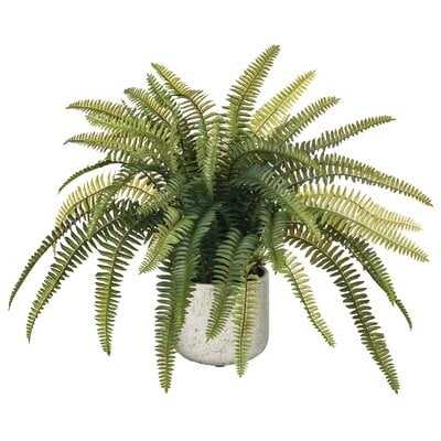Life-like Potted Fern - Wayfair