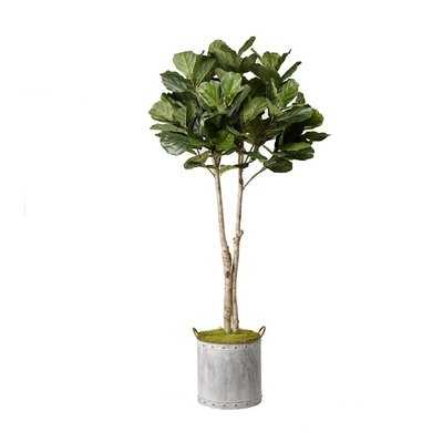 Fiddle Leaf Fig Tree Foliage Plant in Planter - AllModern