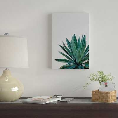 Agave Cactus by Orara Studio - Wrapped Canvas Graphic Art Print - AllModern