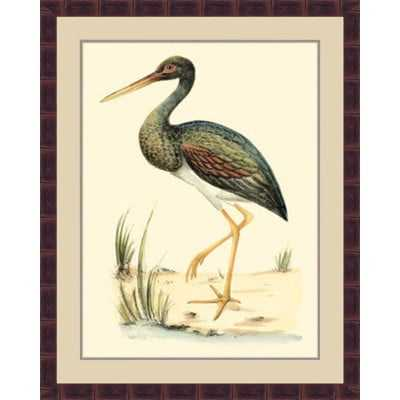'Water Birds II' Framed Painting Print - Wayfair