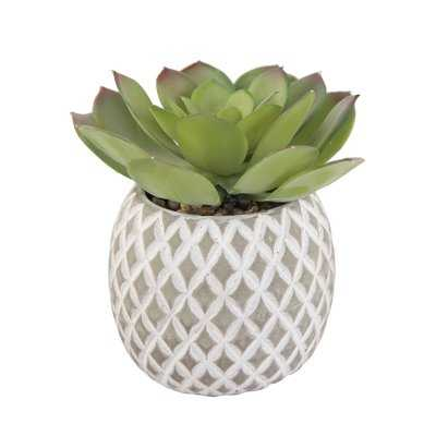 Faux Cement Pineapple Agave Plant in Planter - Wayfair
