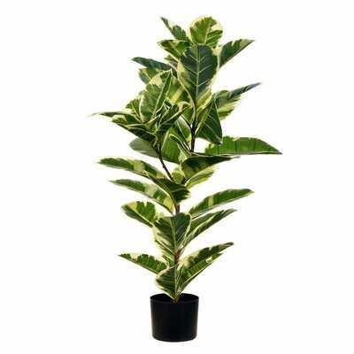 Real Touch Leaves Oak Tree in Pot - Wayfair