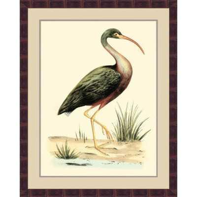 'Water Birds I' Framed Painting Print - Wayfair