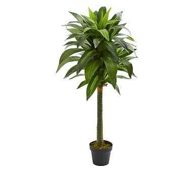 Dracaena Faux Plant, 4' - Pottery Barn