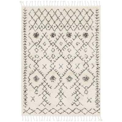 Roger Modern Bohemian Ivory/Charcoal Area Rug - Wayfair