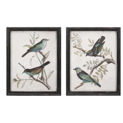 'Maisly Bird' 2 Piece Picture Frame Graphic Art Set - Birch Lane