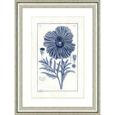 'Blue Botanical II' Framed Graphic Art Print - Birch Lane