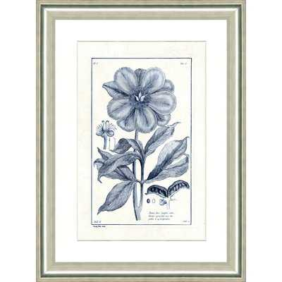 'Blue Botanical I' Framed Graphic Art Print - Birch Lane