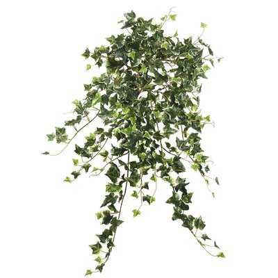 Artificial Variegated Mini Hanging Bush Ivy Plant - Wayfair