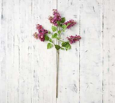 Faux Lilac Stem - Berry - Pottery Barn