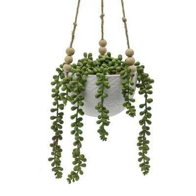 Mix Hanging Diamond Line Ceramic Agave Plant in Planter - Wayfair
