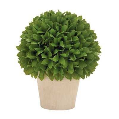 Kinsley Topiary Plant In Pot - Wayfair