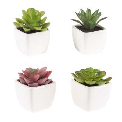 Pure Garden Assorted Mini Faux Succulents in White Ceramic Pots (Set of 4) - Home Depot