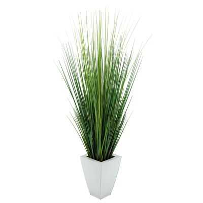 Artificial Foliage Grass in Planter - Wayfair