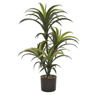 Three Hands Faux Yucca Tree  Pot In Green Polyurethane 26In L X 24In W X 33In H - Wayfair