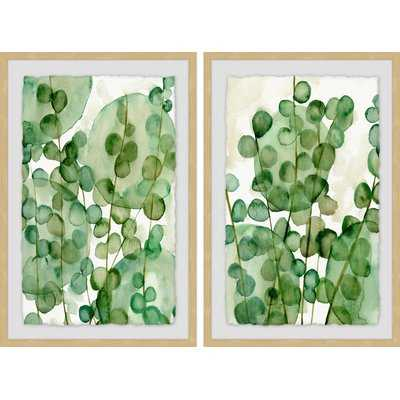 'Zanzibar Gem III' 2 Piece Framed Watercolor Painting Print Set Paper - Wayfair