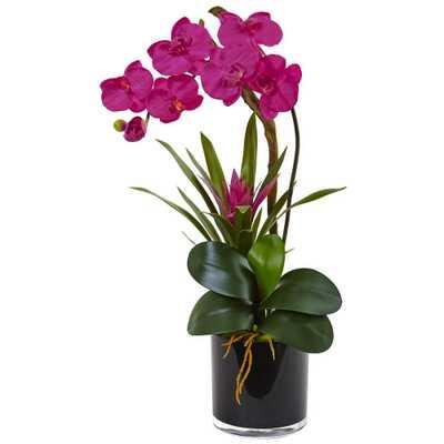 Orchid and Bromeliad Silk Arrangement - Home Depot