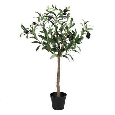 Faux Olive Tree in Pot - Wayfair