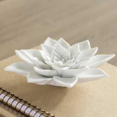 Bisque White Porcelain Succulent Figurine - Wayfair