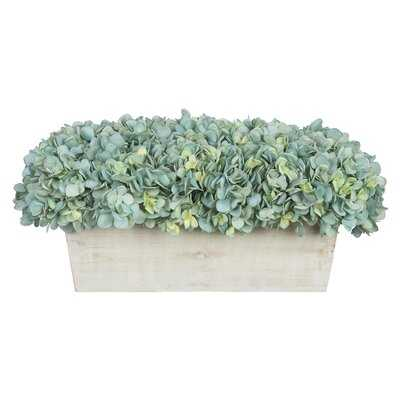Hydrangeas Floral Arrangement in Planter - Birch Lane