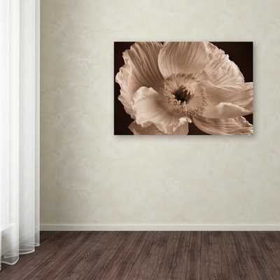 """30 in. x 47 in. """"Sepia Poppy I"""" by Cora Niele Printed Canvas Wall Art - Home Depot"""