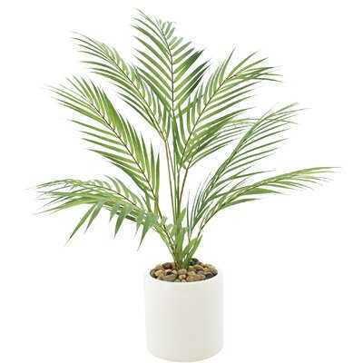 Palm Plant With River Rocks In White Planter - Wayfair