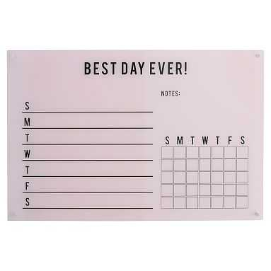 Best Day Ever! Acrylic Wall Planner, Blush - Pottery Barn Teen