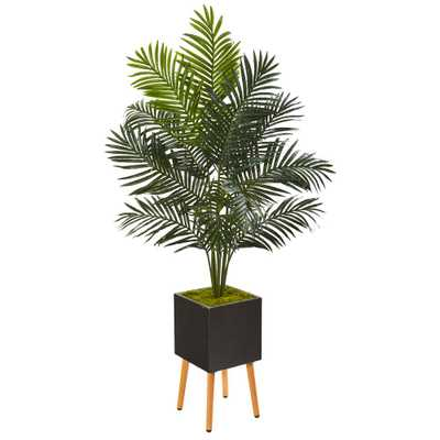 Nearly Natural 65 in. Paradise Palm Artificial Tree in Black Planter with Stand - Home Depot