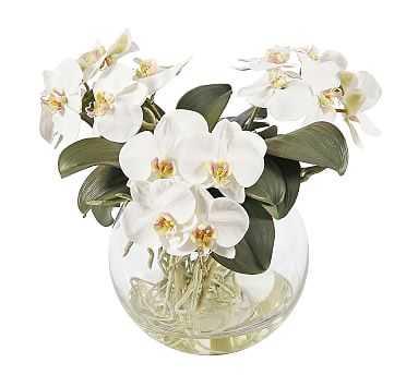 Faux Orchid Phalaenopsis Arrangement in Pot - Pottery Barn