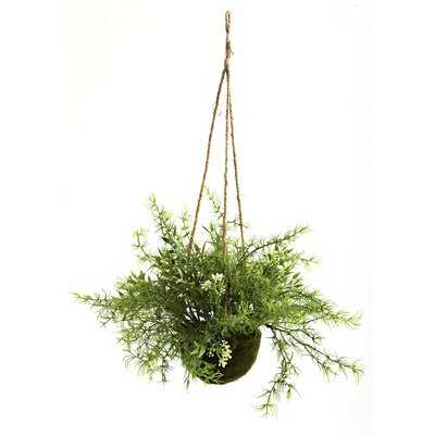 "9"" Ruscus, Sedum and Springeri Hanging Faux Plant in Basket - Wayfair"