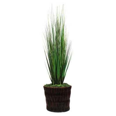 Grasses Floor Plant in Basket - Wayfair