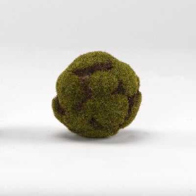 Crackled Moss Ball Plant (set of 3) - Wayfair