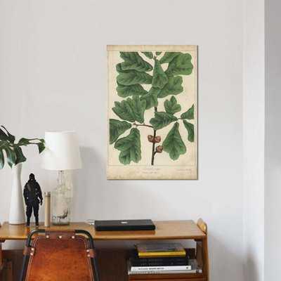 'Oak Leaves & Acorns I' Graphic Art Print on Canvas - Wayfair