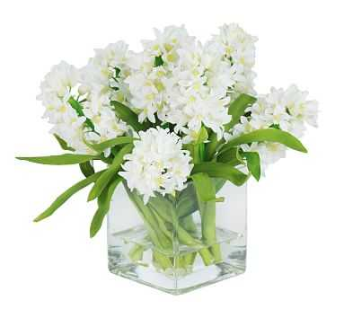 Faux Hyacinth in Square Glass - White - Pottery Barn