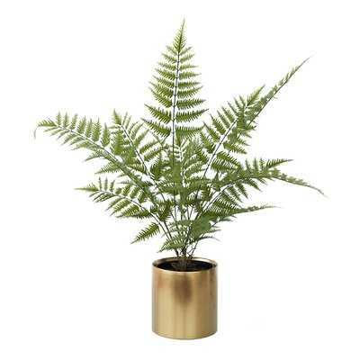 Artificial Brake Fern Plant in Ceramic Vase - Wayfair