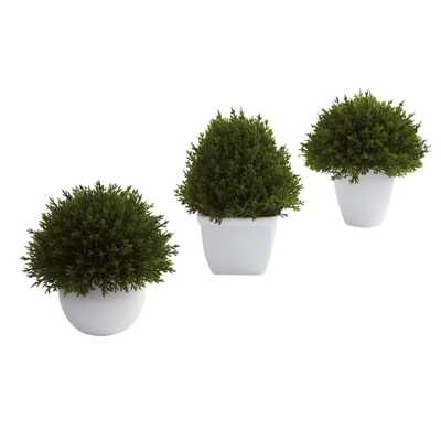 Mixed Cedar Topiary Collection (Set of 3) - Home Depot