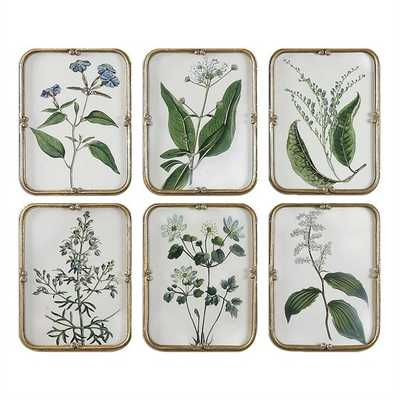 """Blue Floral Collection, S/6-13"""" x 17""""- Gold Leaf Finish  Frame with Gray Wash-No mat - Hudsonhill Foundry"""